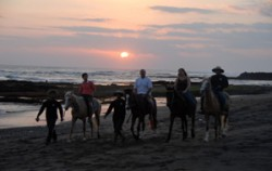 Canggu Beach,Bali Horse Riding,Bali Horse Riding