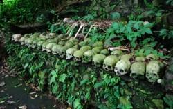 Altar Skulls of Trunyan,Bali trekking,Madu Sari Trunyan Tour
