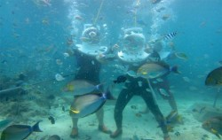 Sea Walker Lembongan, Lembongan Package,