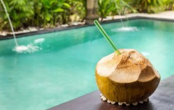 Fresh Coconut,Lembongan Package,Lembongan One Day Tour