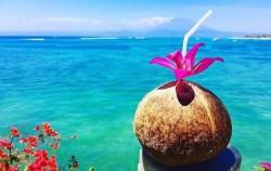 Coconut Fresh image, Lembongan One Night Package, Lembongan Package