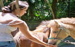 Bali Zoo Park, Bali Zoo Park, Feed to the animals