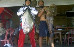 Fishing Charter Bali, Bali Fishing, Casting and Jigging