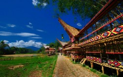 TORAJA CULTURE AND NATURE TOUR INCL. MAKASSAR 4 Days / 3 Nights, Kete Kesu Village