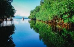 Mangrove Point,Lembongan Package,Three Islands Snorkeling Trip