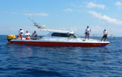 Dewi Ocean Boat,Bali Fishing,Fishing Activity by Dewi Ocean
