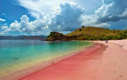 Pink Beach,Komodo Adventure,Komodo Tour 3 Days/ 2 nights Package