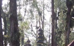 Puncak Manggu,Bali Trekking,Bali Swaha Trekking Adventure