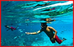 Snorkeling,Lembongan Package,One Day Package by Rocky Fast Cruise