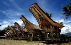 Tongkonan House,Toraja Adventure,Toraja Tour and 1 Day Rafting at Maulu River 4Days 3 Nights