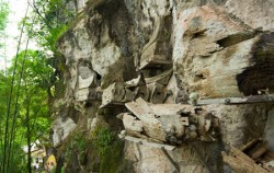 Toraja Hanging Graves,Toraja Adventure,TORAJA CULTURE AND NATURE TOUR  5 Days / 4 Nights