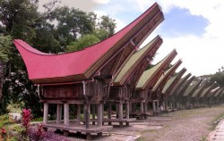 Toraja Traditional House,Toraja Adventure,Toraja Culture and Nature Tour 3 Days  2 Nights