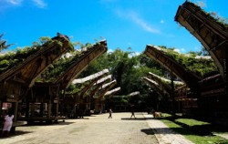 Toraja Village,Toraja Adventure,TORAJA CULTURE AND NATURE TOUR INCL. MAKASSAR 4 Days / 3 Nights