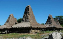 Sumba  Traditional  Tour 4N 5D, Tosi Village