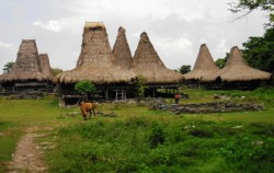 Tosi Village image, Sumba Adventure Tour 10D 9N, Sumba Adventure