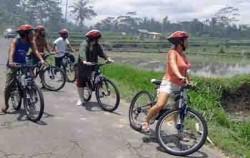 Bike Baik Tour image, Bali Bike Baik Tour, Bali Cycling