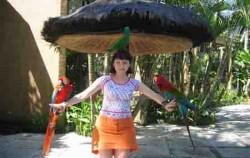 Girl And Birds,Adventure,Bali Bird Park