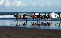 Horse Riding at Beach,Bali Horse Riding,Bali Horse Riding