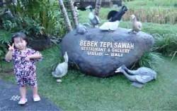 Bebek Tepi Sawah, Bali Restaurants, Icon Bebek Tepi Sawah