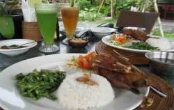 Bebek Goreng Krispi,Bali Restaurants,Bebek Tepi Sawah
