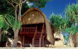 cruise and Hai Tide Huts,Lembongan Transfer,Hai Tide Huts Overnight Package