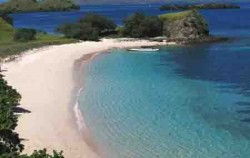 Pink Beach Komodo Island,Komodo Adventure,Sailing Komodo Adventure 3D2N Tours