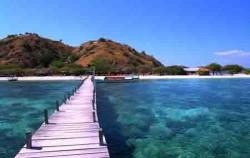 Dock Komodo Island,Komodo Adventure,Sailing Komodo Adventure 3D2N Tours