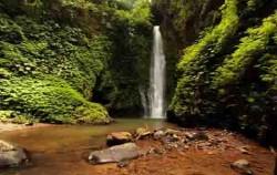 Singaraja Gitgit Waterfall Tour, Bali Sightseeing, Gitgit Singaraja Bali