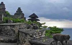 Uluwatu Temple,Bali Sightseeing,Uluwatu Temple and Sunset Tour