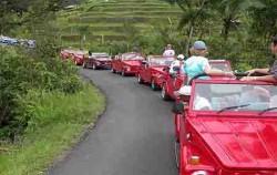 VW Tour,VW Bali Tour,VW Bali Tour