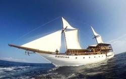 Adishree,Komodo Boats Charter,Phinisi Boat Adishree
