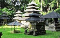 One Day Tour with Kecak Dance, Alas Kedaton Temple