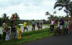 Bali Bike Baik Tour, Village Rice View Cycling