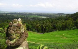 Beautiful View,Fun Rides Bali,Bali Cross