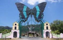 Bantimurung Butterfly Museum,Toraja Adventure,SOUTH SULAWESI 8D7N TOUR