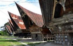 Batak Toba Village,Sumatra Adventure,Explore Tangkahan Tour B 7 Days 6 Nights