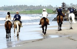 Canggu beach view,Bali Horse Riding,Bali Horse Riding