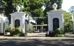 Bogor Botanical Garden,Jakarta Tour,The Breeze of Puncak Bogor Highlands