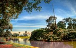 The Breeze of Puncak Bogor Highlands, Bogor Botanical Garden