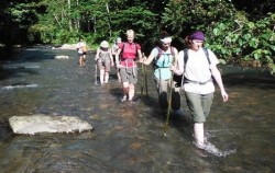 Bukit Lawang Trekking,Sumatra Adventure,North Sumatra Special Tour 14 Days 13 Nights