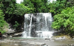 Explore Tangkahan Tour A 7 Days 6 Nights, Sumatra Adventure, Buluh Waterfall