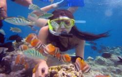 Manado Tour 4 Days & 3 nights Package, Manado Explore, Bunaken Snorkeling