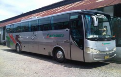 Large Bus 47 Seats,Bali Car Charter,Bus Charter in Bali