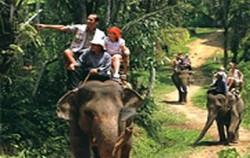 Combination with Elephant Ride image, Toekad Adventure, Bali Quad Adventure