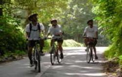 Village Cycling image, Jatiluwih & Kintamani Cycling, Bali Cycling