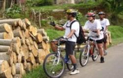 Telaga Waja Cycling Trip,Bali Cycling,Jatiluwih & Kintamani Cycling