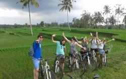 Past the Rice Field,Bali Cycling,Bali Great Bike Tour