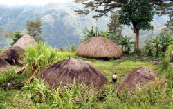 Baliem Valley Package 4 Days 3 Nights, Papua Adventure, Dani Village