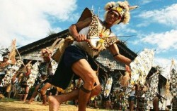 Dayak Tribe,Borneo Island Tour,Orangutan and Dayak Explore 5 Days 4 Nights