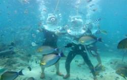 Deep Ocean Walker, Benoa Marine Sport, Deep Ocean Walker